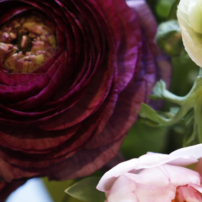 kvadrat blomma2